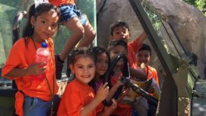Children wearing orange t-shirts play on a jeep.
