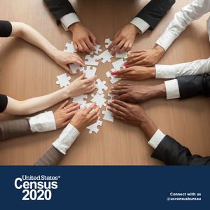 census 2020 hands puzzle